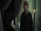 Harry Potter and the Deathly Hallows ? Part 1 (You Have No Family)